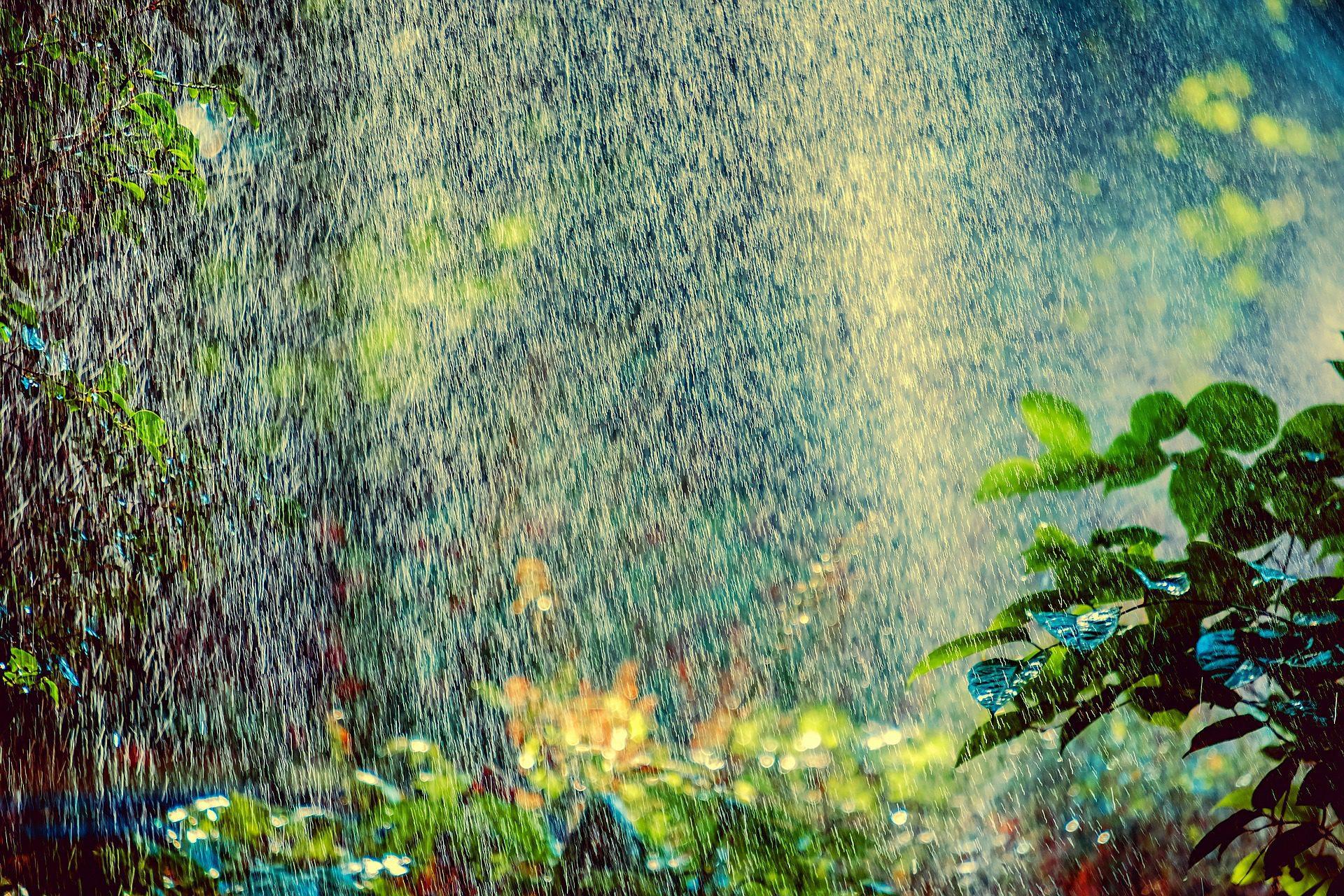 Spring Sprinkler Tune-Up