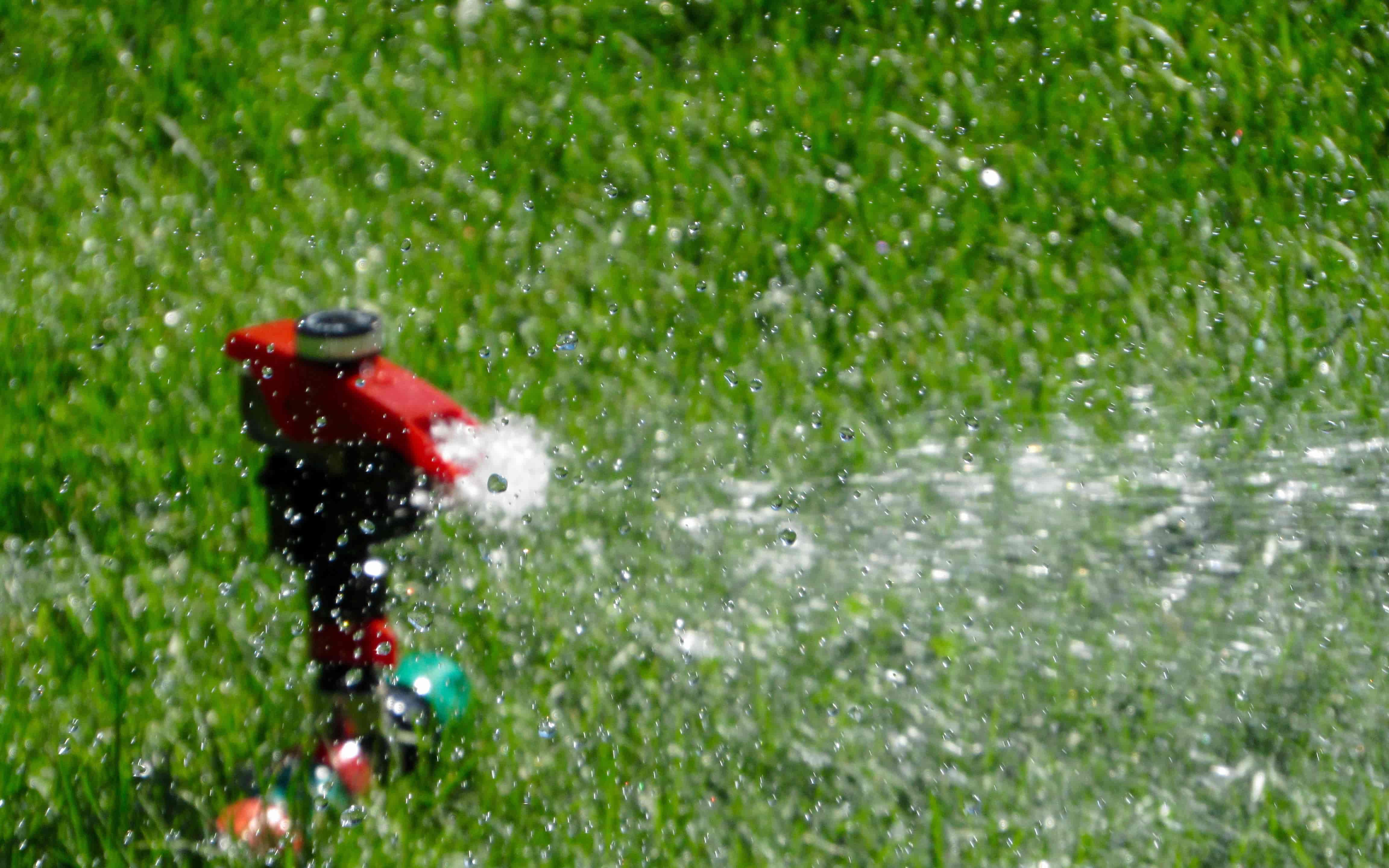 Tips for Watering Your Lawn This Fall
