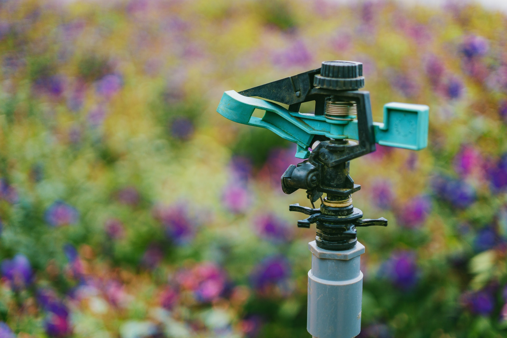 Starting Your Sprinklers in the Spring – What You Need to Know